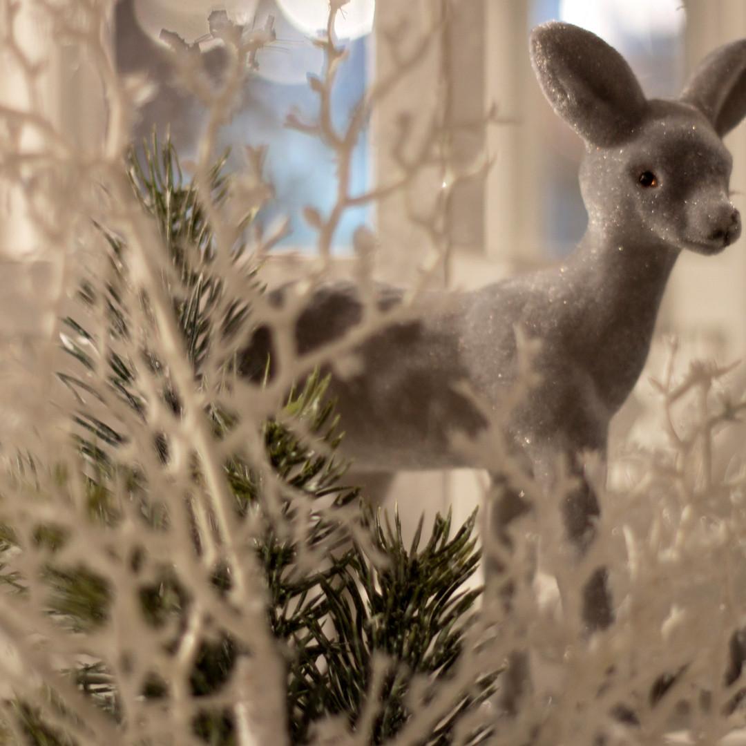 Weihnachten201910.jpg