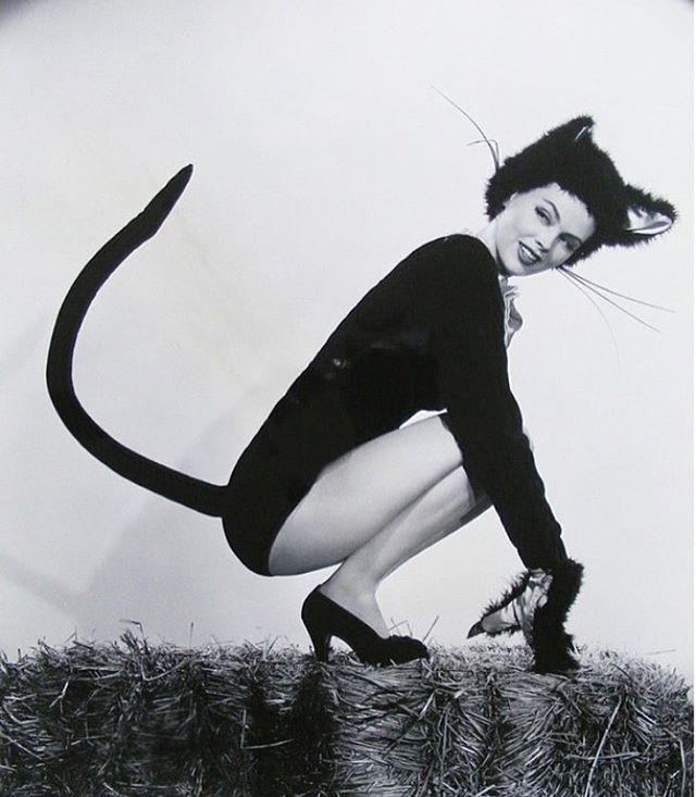 #paulettegoddard 1910-1990 #hollywoodstar #vintagehollywood #1940s #catstagram #cats