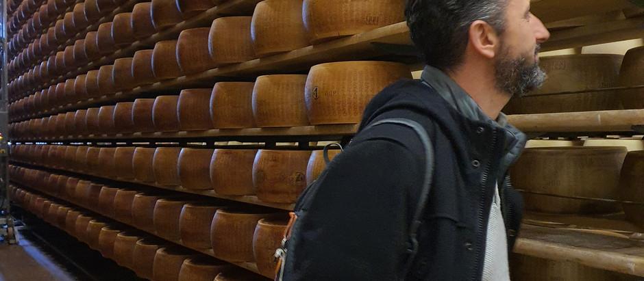 """Andrea Costa (Pd): """"Massima attenzione alla filiera del Parmigiano Reggiano"""""""
