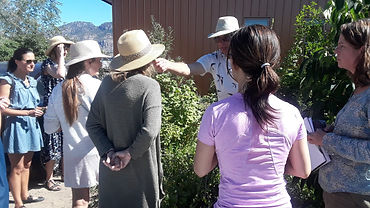 Food Forest Tour 2.jpg