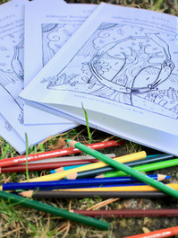 RESES Colouring Book in Print 3.jpg