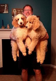 Dr. Chris Carmichael and standard poodles