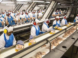 Aumentan las importaciones mexicanas de pollo proveniente de Brasil