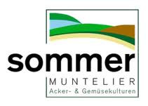 Sommer Acker- & Gemüsekulturen