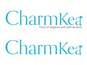 Font Foundry Logo