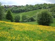 Moorlands country park is waving the Green Flag a sixth time