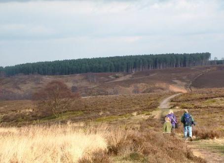 Multi-million pound plan to preserve Staffordshire beauty spot