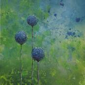 Three Blue Allium