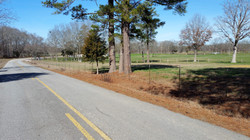 Tract 7 Road Frontage