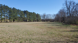 4.68 Acre Tract (1)