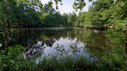 Tract 9 Pond (1)