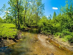 Sandy Creek.jpeg