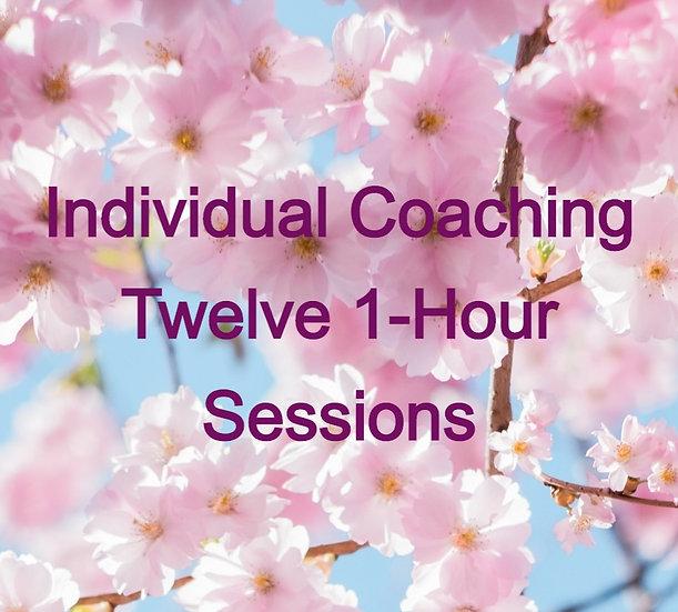 Twelve 1-hr Sessions