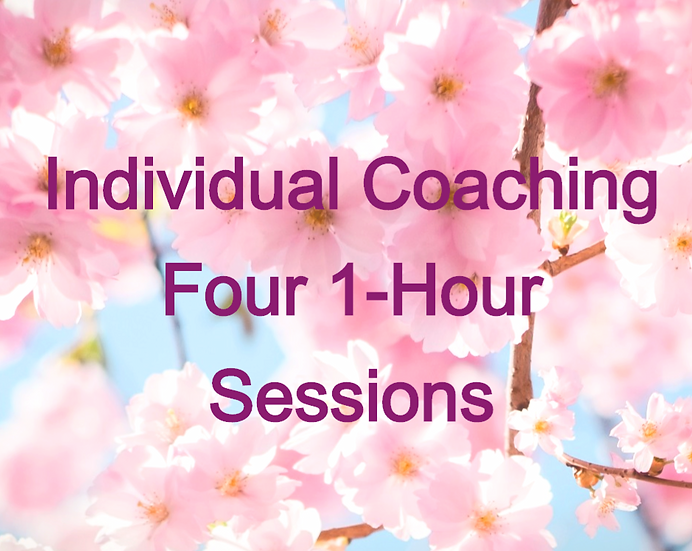Four 1-Hour Sessions
