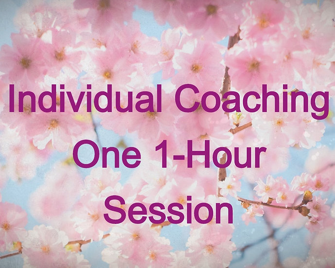 One 1-Hour Session