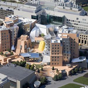 MIT Stata Center