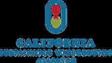 CSWA Logo for YIR.png