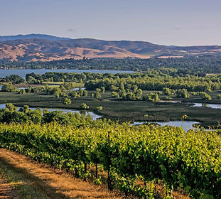 Lake County Wine Country-315_Credit Geor