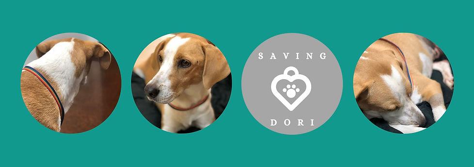 SAving Dori.jpg