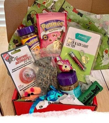 Santa Claws Cat Gift Box