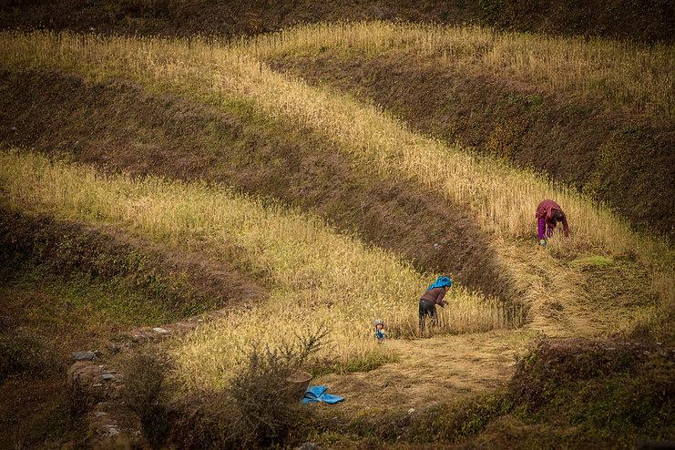 Annapurna Round, Nepal