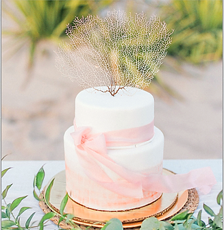 coral cake_edited.png