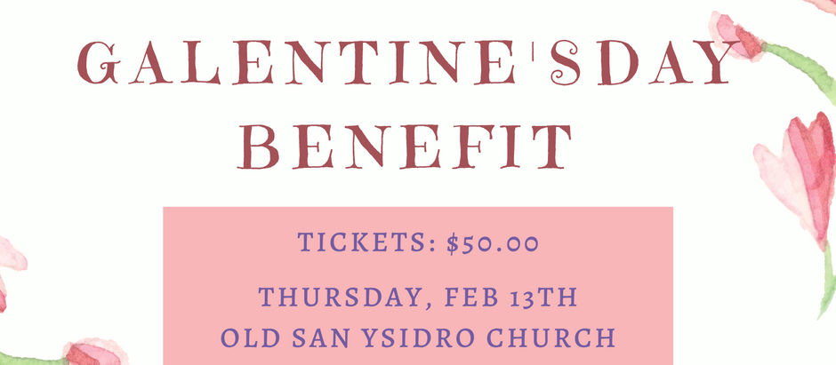 Galentine's Day Benefit Feb. 13th, 2020