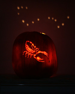 Pumpkin Carving of Scorpio