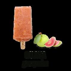 RPF_GUAVA_s.png