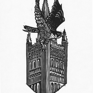 Cathedral Peregrine