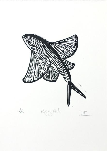 flysingfish.jpg