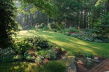 sacramento county home backyard.jpg