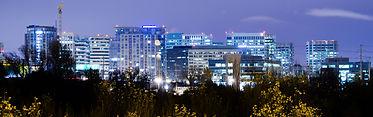 SJ_skyline_at_night_horizontal (1).jpg