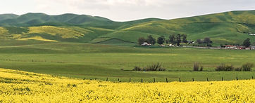 alameda county pleasanton ridge2.jpg