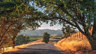 Solano County2.jpg