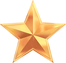 gold%20star_edited.png