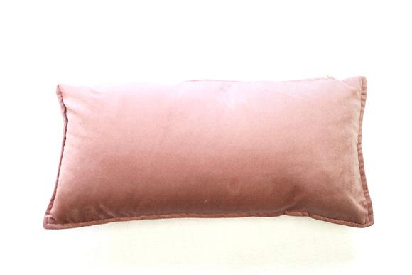 Nude pink velvet