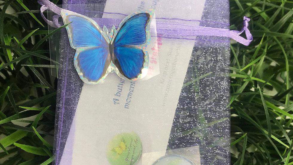 Butterfly Mini Kit - Party Favor