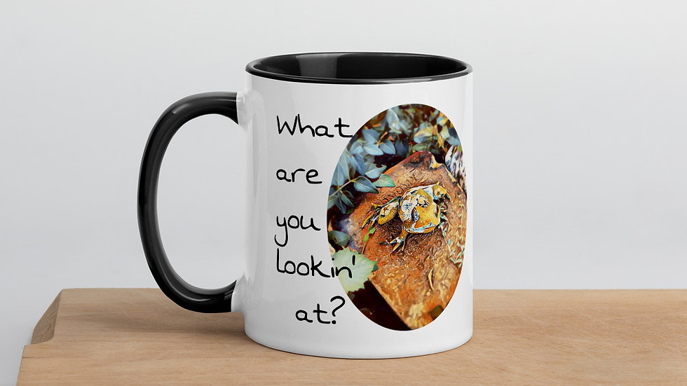 What are You Lookin' At Frog Mug