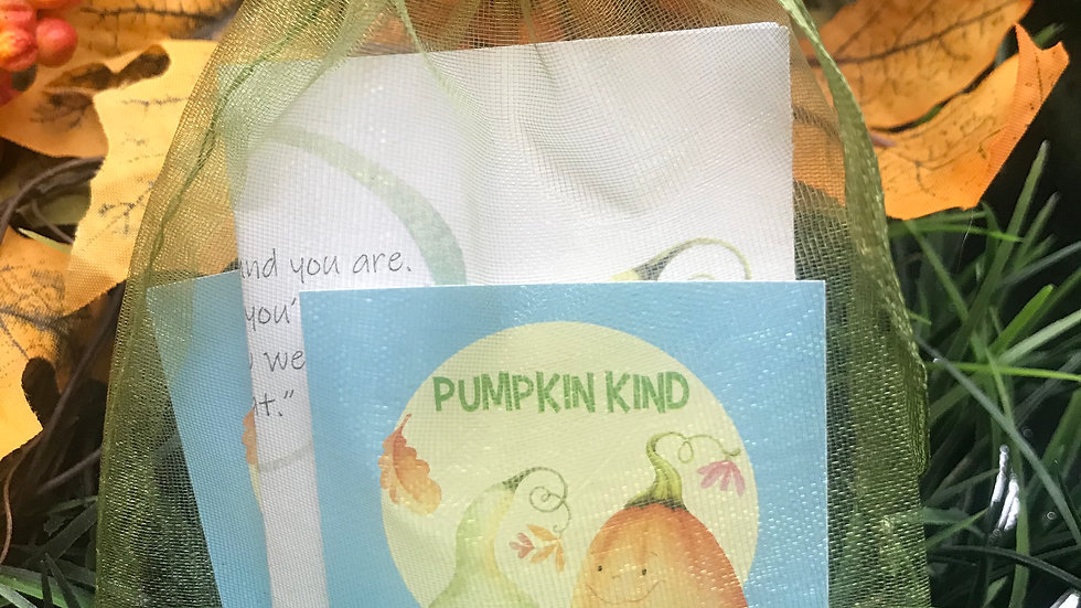 Pumpkin Kind Mini Kit