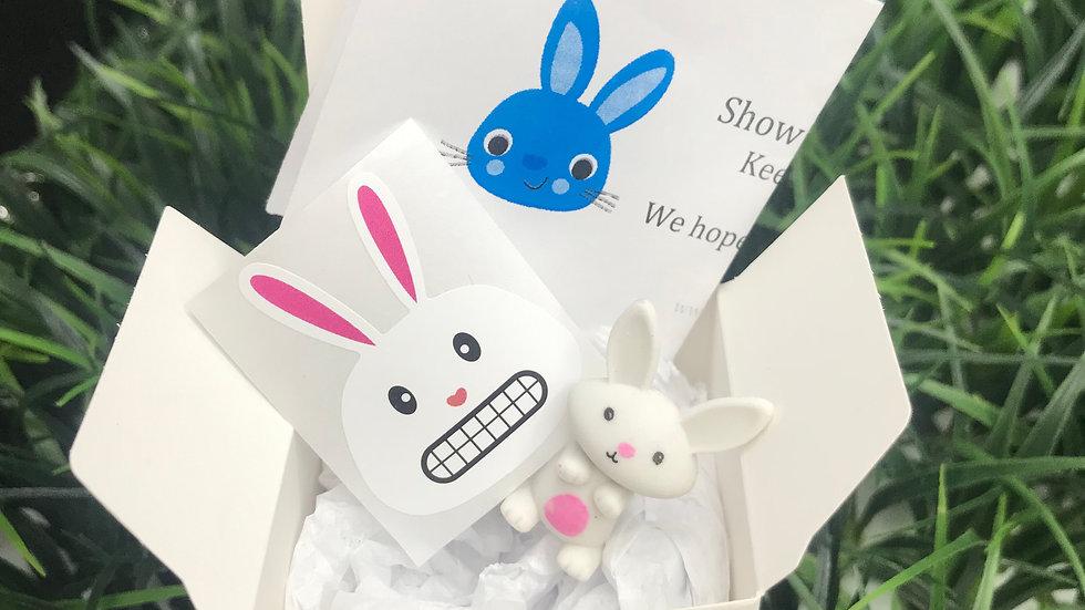 Bunny Mini Kit - Party Favor