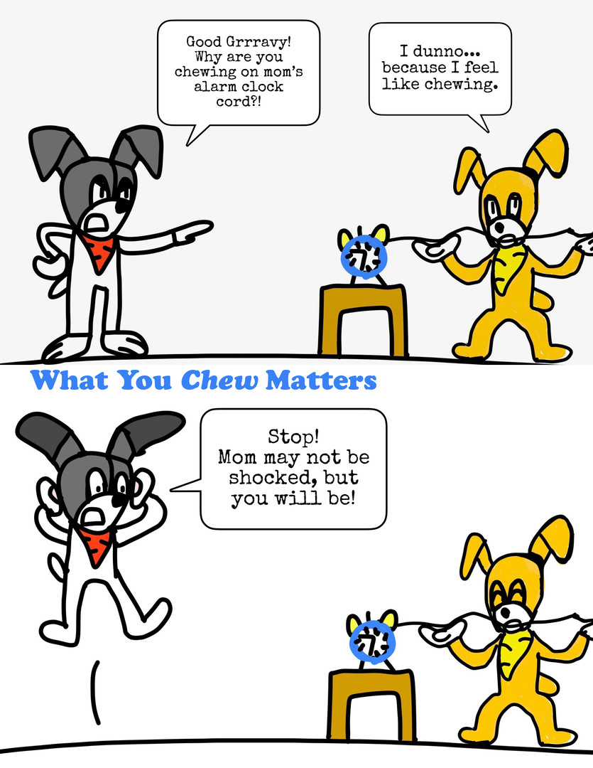 What You Chew Matters