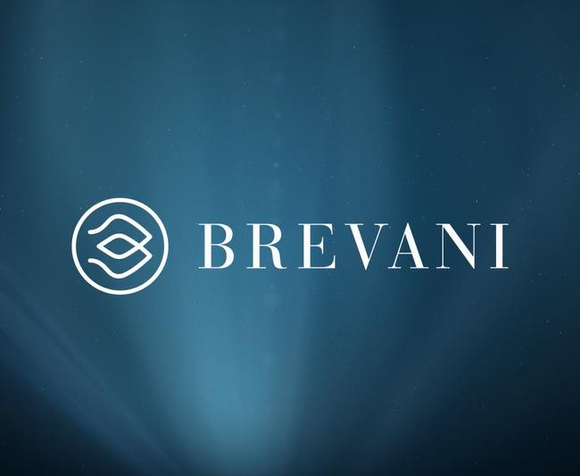 Brevani-Intro-4.mp4