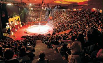 """Festival Internacional del Circ """"Elefant d'Or"""" 2021 Edició Especial: Festival de Festivals"""