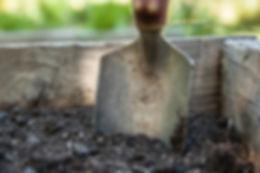 garden-1176406_1920.jpg