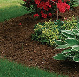 041106244_mulch_to_smother_weeds_xlg-thu