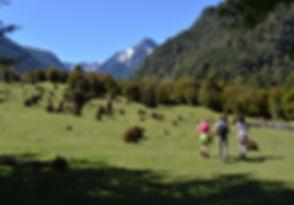 Trekking valle cochamo