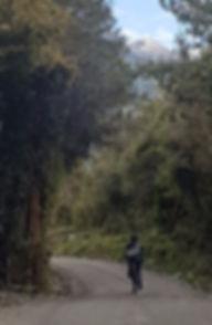 mountainbike, Camping, Trekking, Hostal B&B, Valle de Cochamó, inicio del sendero a La Junta, alojamiento, hospedaje