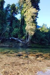 rio cochamo.jpg
