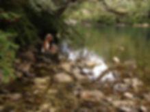 Cochamo, rio cochamo, patagonia